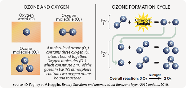 the chemical content and depletion of the ozone later View notes - 9-ozone-depletion from chemical e che244 at universiti teknologi mara ozone depletion ch 13 (p 437) the ozone layer the ozone layer is a thin layer of gas (ozone o3) 15-50kms above.